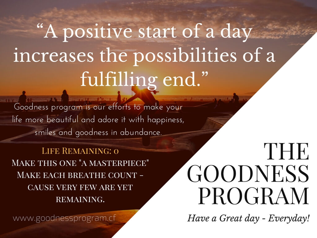 The Goodness Program